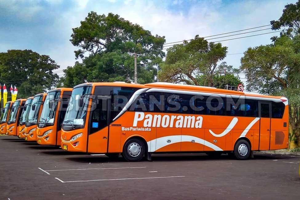 Bus pariwisata Jakarta Po Panorama