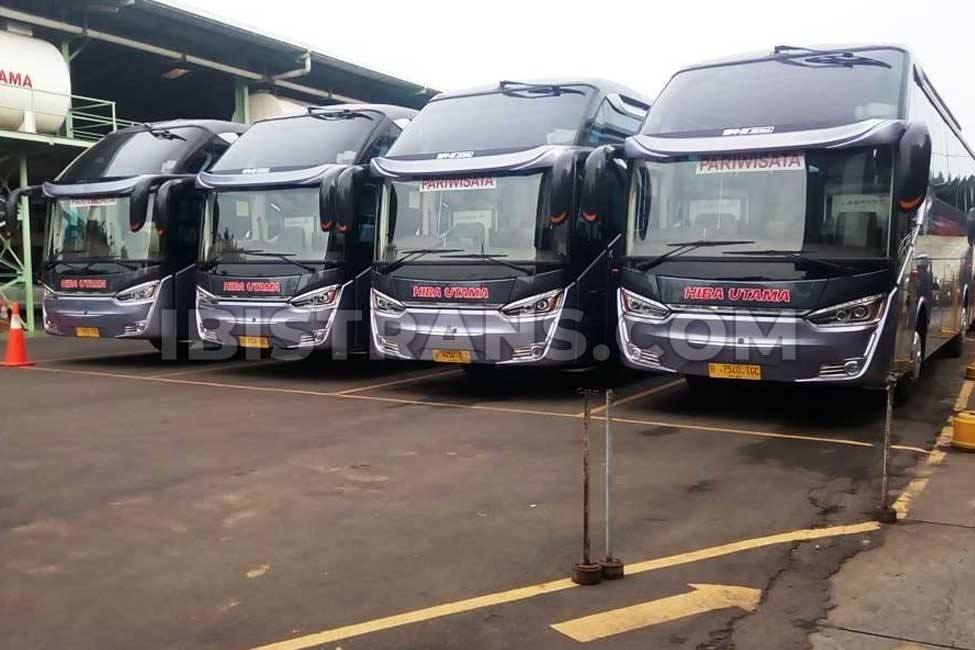 ibistrans.com Foto sewa bus pariwisata hiba utama 59 seat
