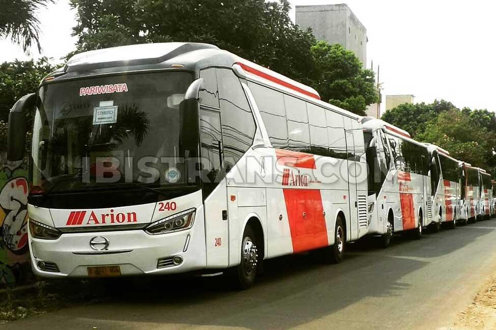 ibistrans.com bus pariwisata jakarta Arion
