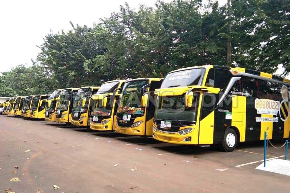 ibistrans.com bus pariwisata jakarta BeeBuzz