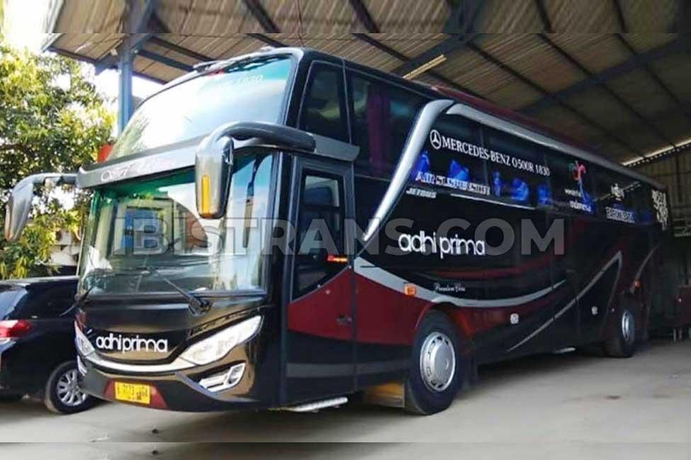 ibistrans.com bus pariwisata jakarta adhi prima