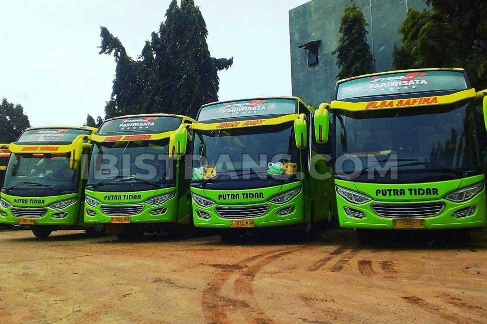 ibistrans.com bus pariwisata jakarta putra tidar