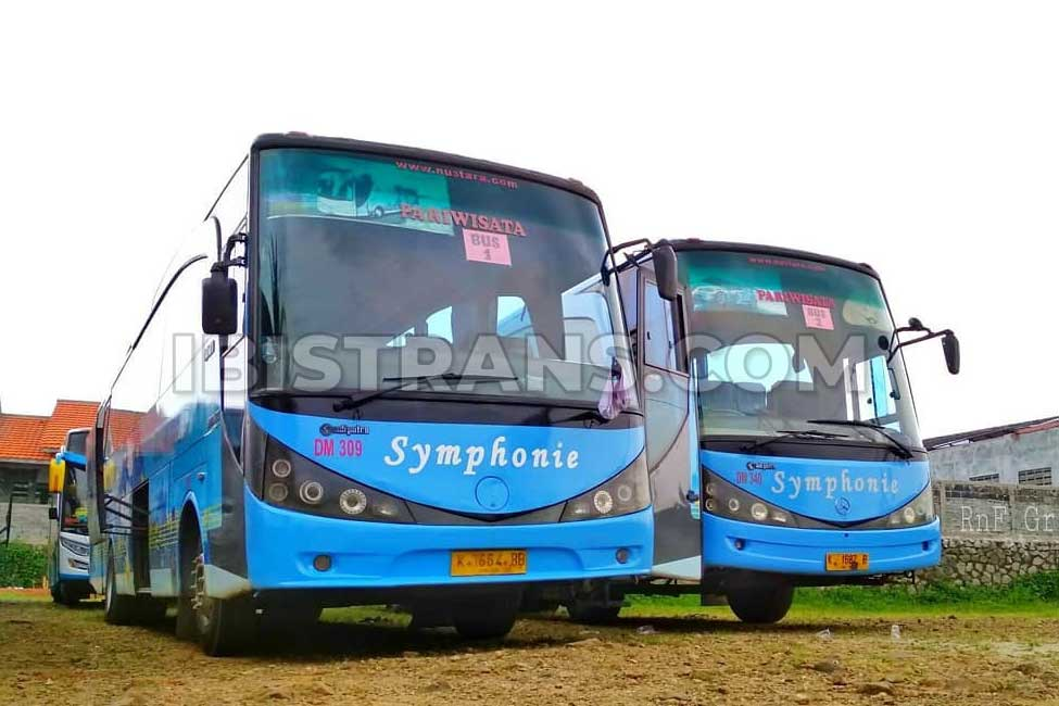 ibistrans.com bus pariwisata jakarta symphonie