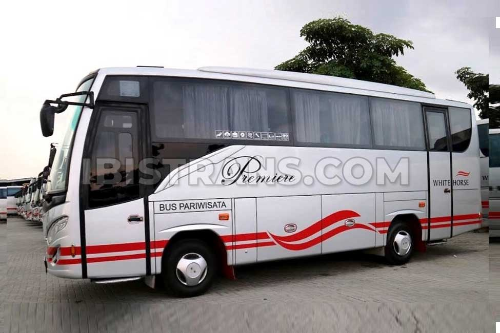 ibistrans.com bus pariwisata medium white horse