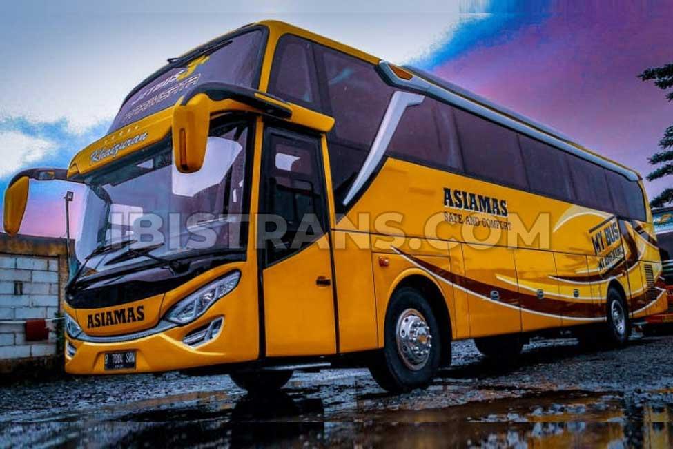 ibistrans.com foto bus pariwisata asiamas 59 seat
