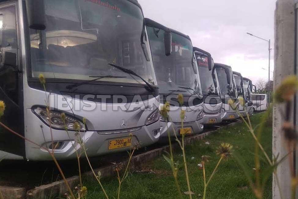 ibistrans.com foto bus pariwisata kerub
