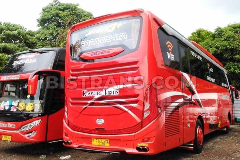 ibistrans.com foto bus pariwisata koswara trans HDD