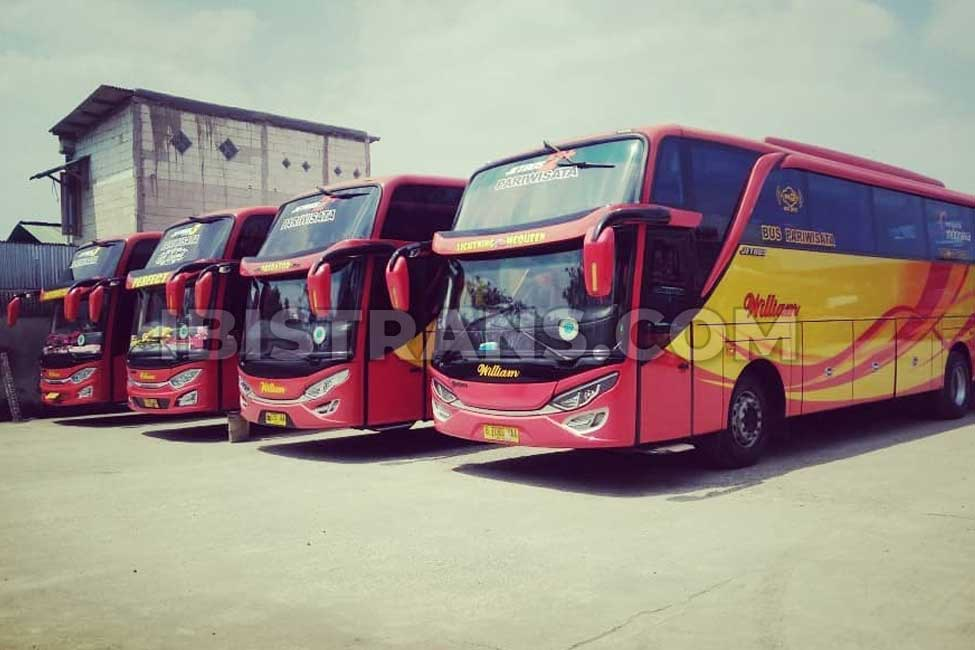 ibistrans.com foto bus pariwisata william