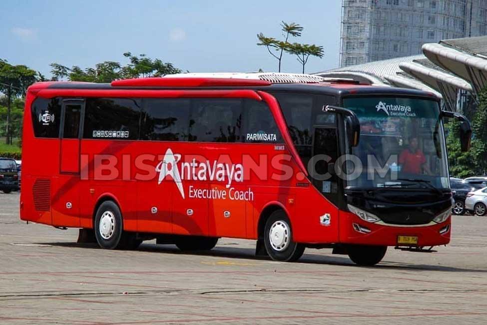 ibistrans.com foto sewa bus pariwisata antavaya