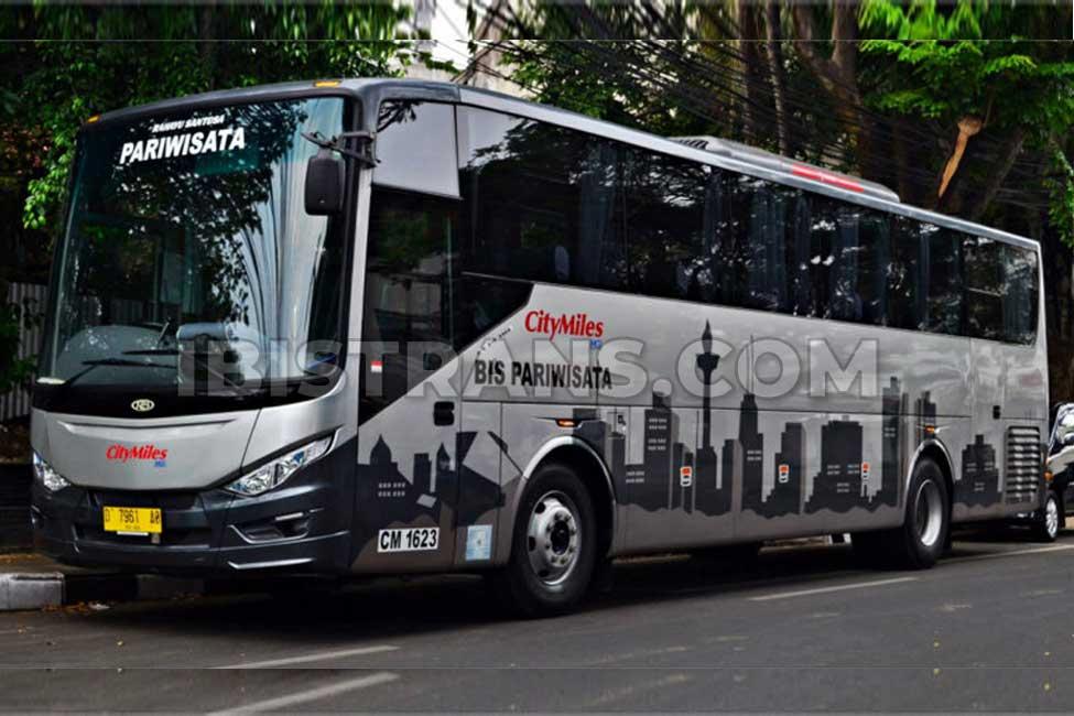ibistrans.com foto sewa bus pariwisata citymiles 59 seat