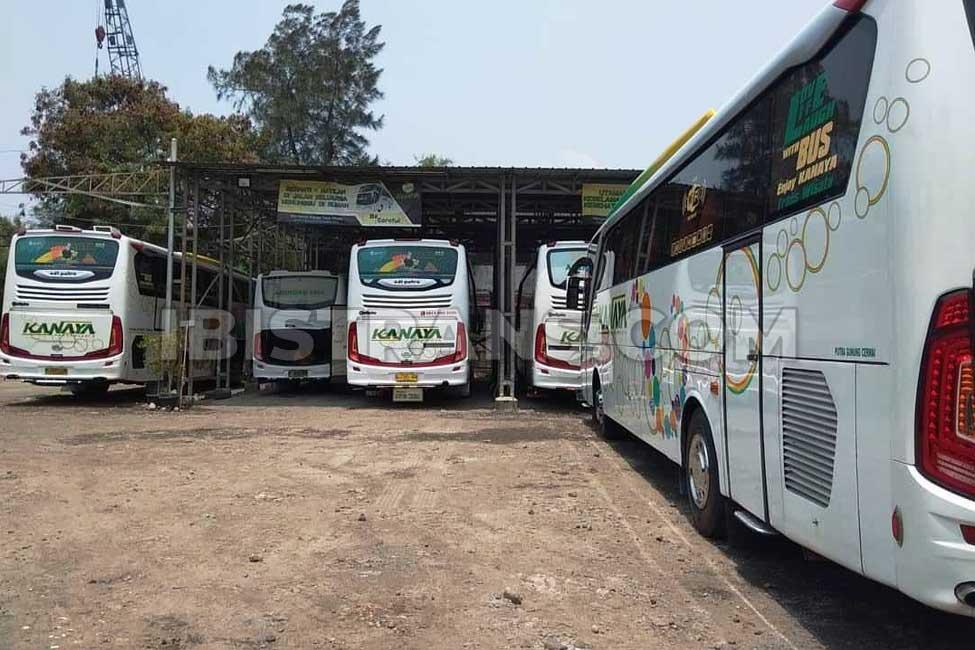 ibistrans.com foto sewa bus pariwisata kanaya garasi