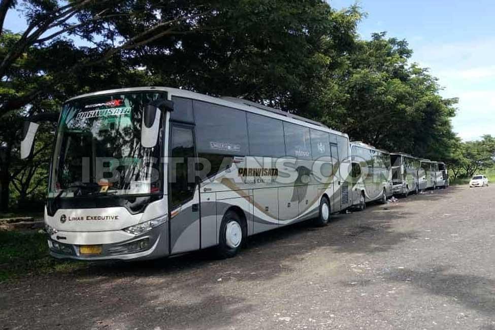 ibistrans.com foto sewa bus pariwisata limas big 59 seat