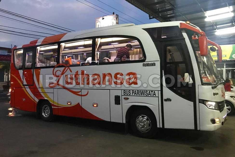 ibistrans.com foto sewa bus pariwisata luthansa medium