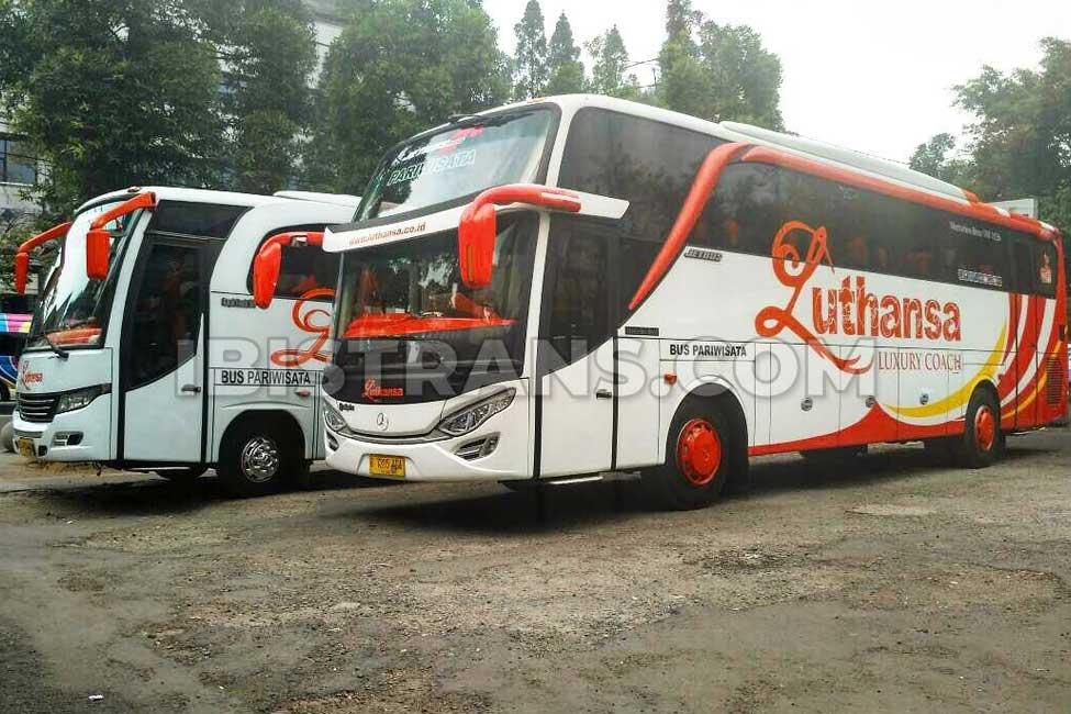 ibistrans.com foto sewa bus pariwisata luthansa