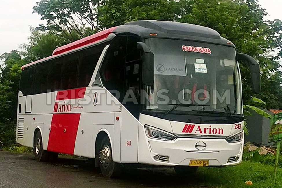 ibistrans.com gambar bus pariwisata Arion