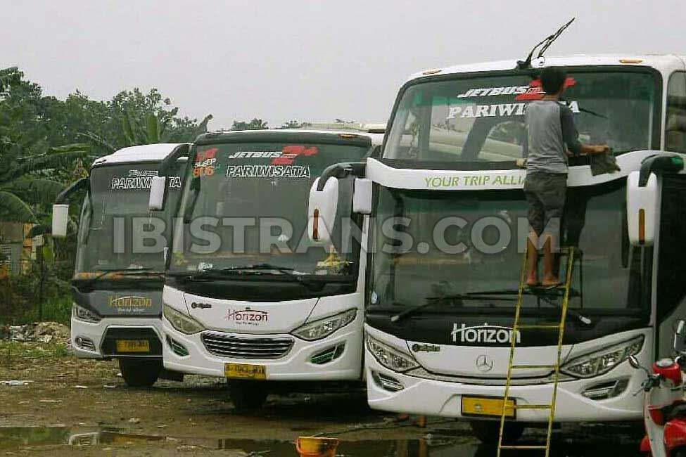 ibistrans.com gambar bus pariwisata Horizon Transport