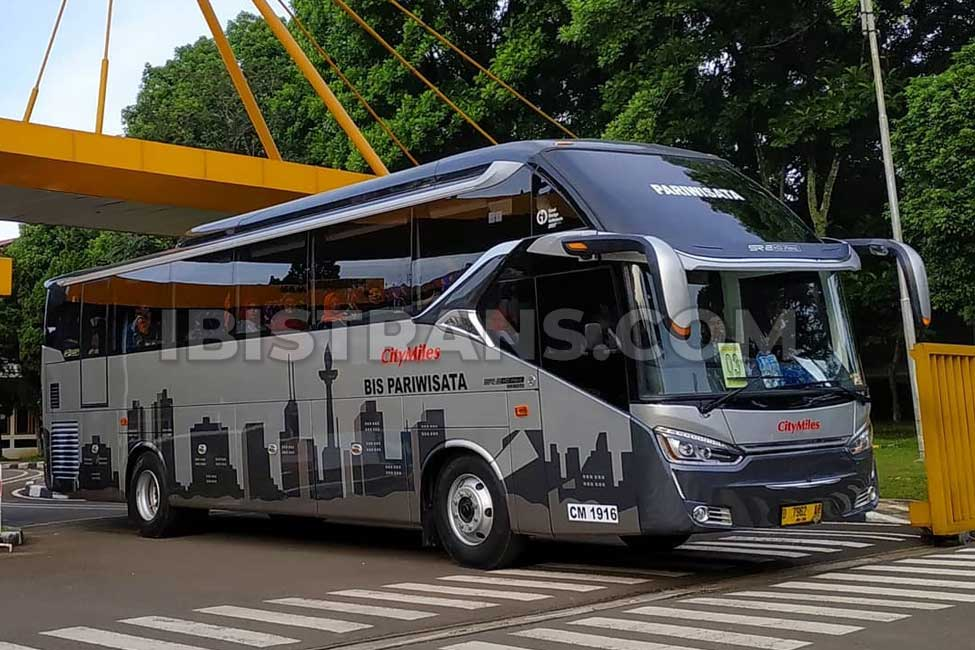ibistrans.com gambar bus pariwisata citymiles
