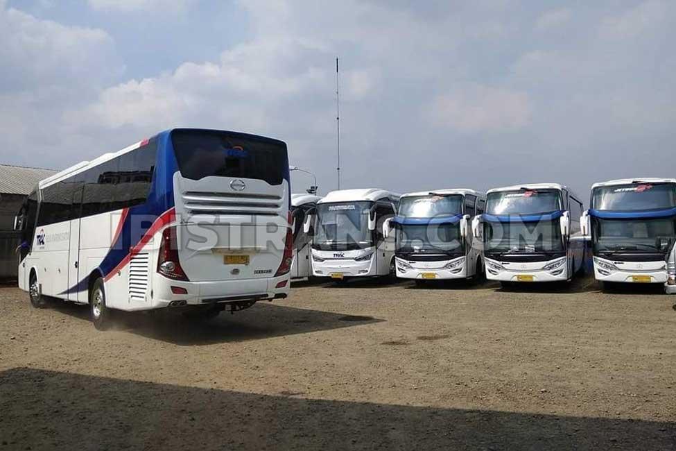 ibistrans.com gambar bus pariwisata trac