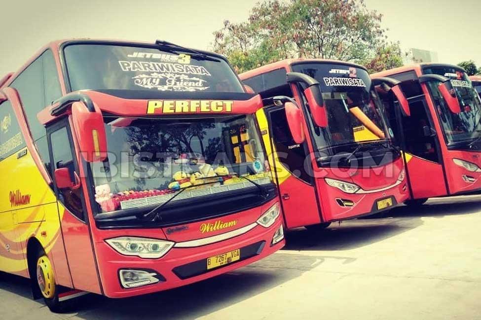 ibistrans.com gambar bus pariwisata william