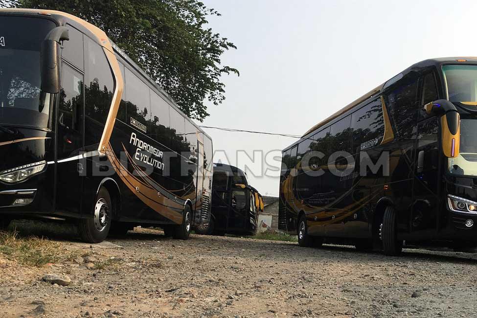 ibistrans.com gambar sewa bus pariwisata andromeda big bus