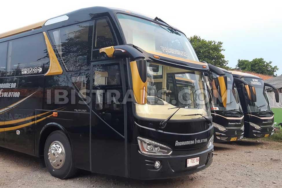 ibistrans.com harga bus pariwisata andromeda HDD