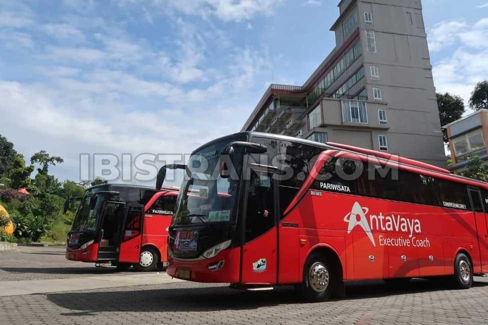 ibistrans.com harga bus pariwisata antavaya 59 seat adiputro