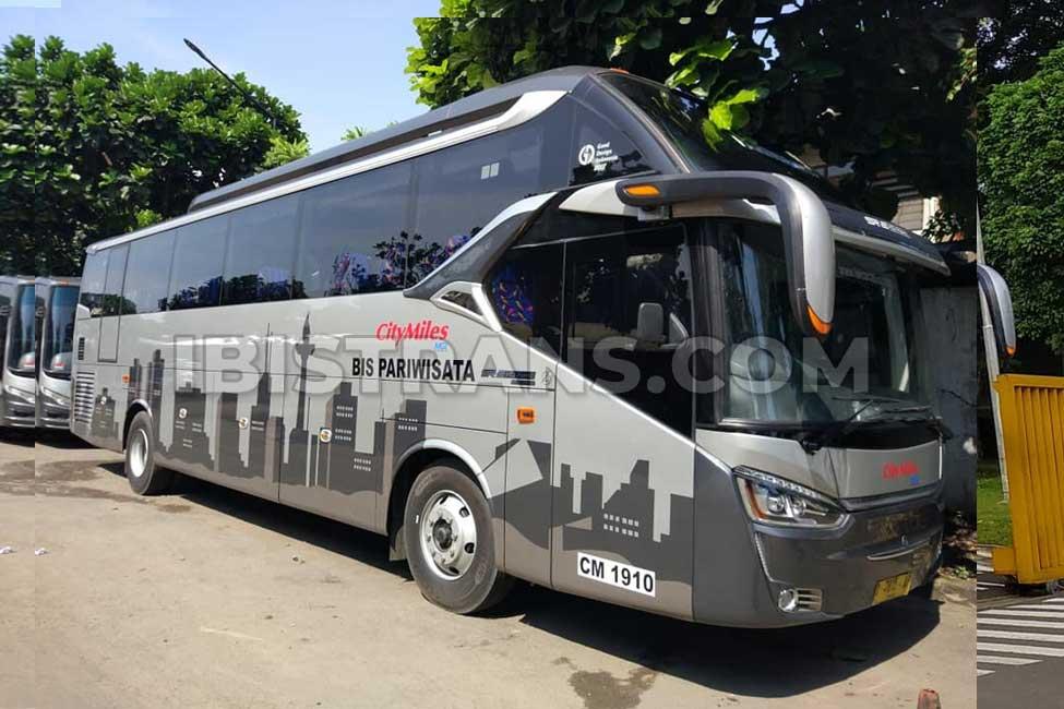 ibistrans.com harga bus pariwisata citymiles