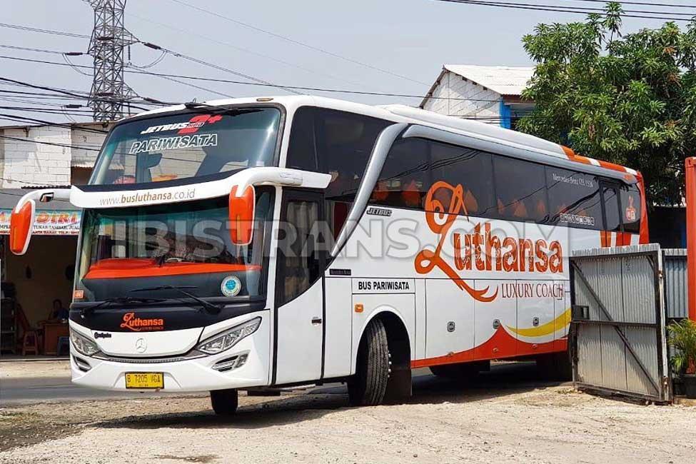 ibistrans.com harga bus pariwisata luthansa
