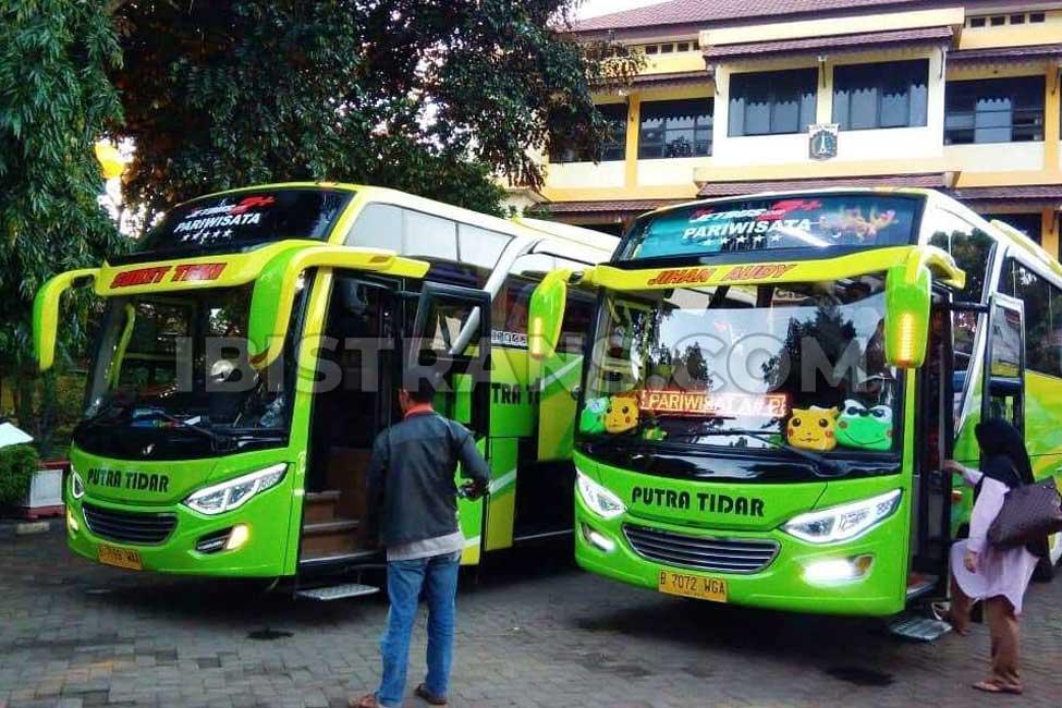 ibistrans.com harga bus pariwisata medium putra tidar
