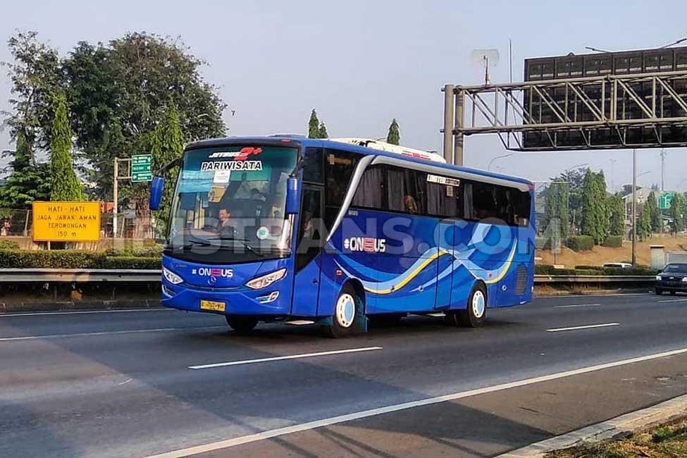 ibistrans.com harga bus pariwisata one bus