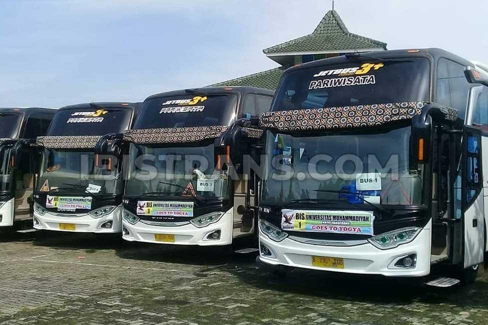 ibistrans.com harga bus pariwisata starbus