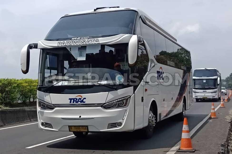 ibistrans.com harga bus pariwisata trac