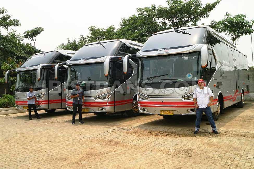 ibistrans.com harga bus pariwisata white horse