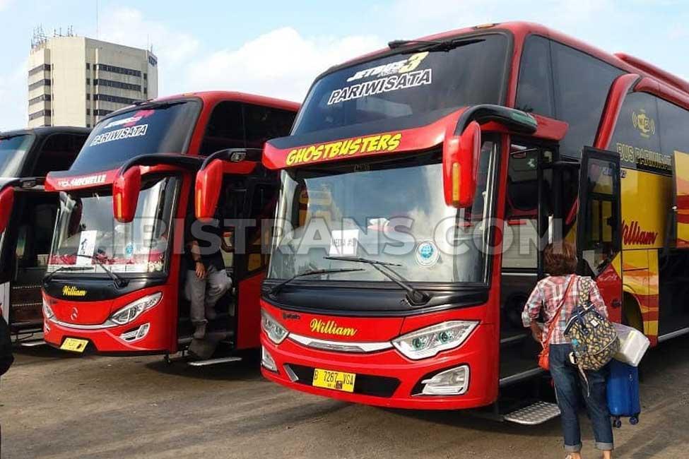 ibistrans.com harga bus pariwisata william