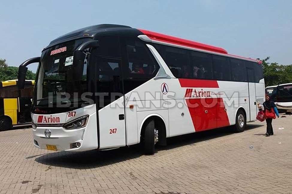 ibistrans.com harga sewa bus pariwisata Arion