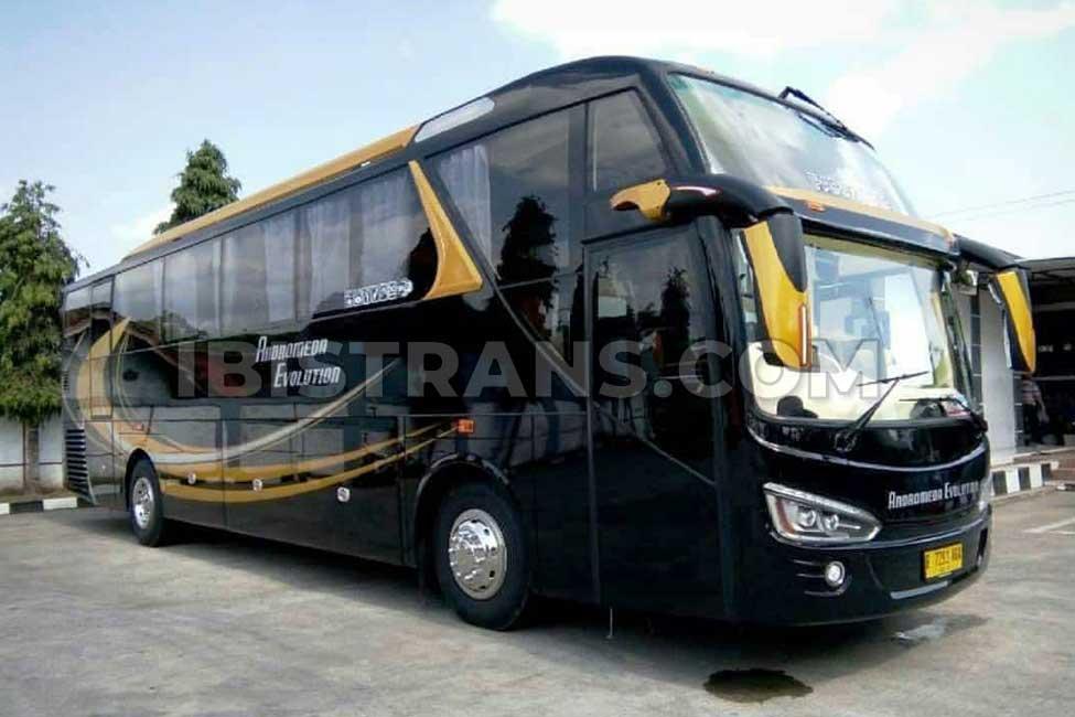 ibistrans.com harga sewa bus pariwisata andromeda HDD