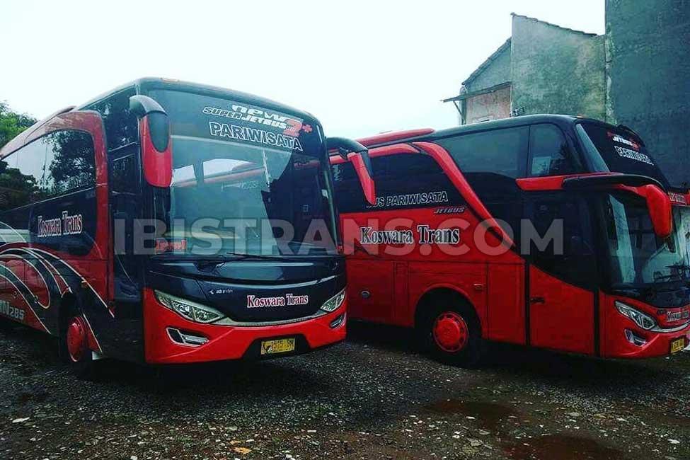 ibistrans.com harga sewa bus pariwisata koswara trans