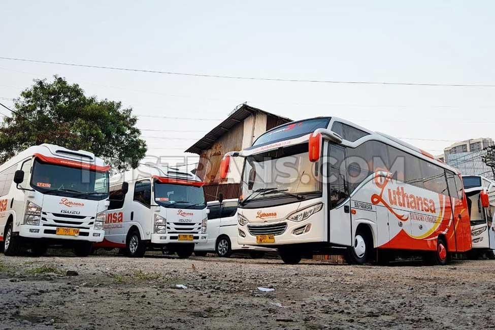 ibistrans.com harga sewa bus pariwisata luthansa