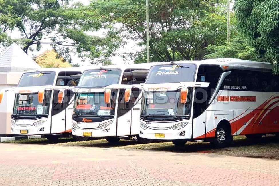 ibistrans.com harga sewa bus pariwisata mega citra wisata