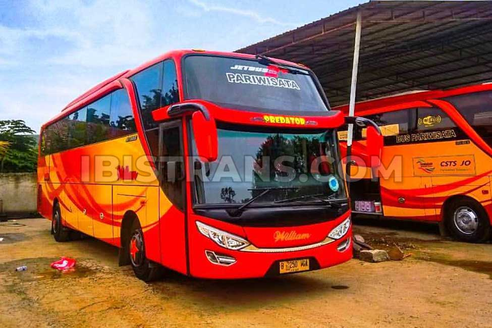 ibistrans.com harga sewa bus pariwisata william