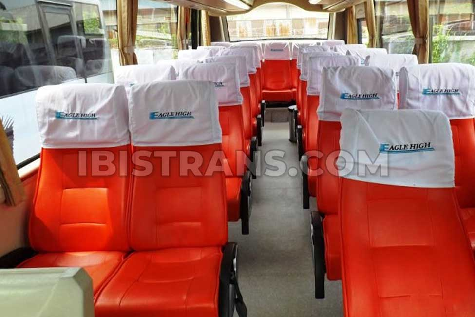 ibistrans.com interior bus pariwisata eagle high