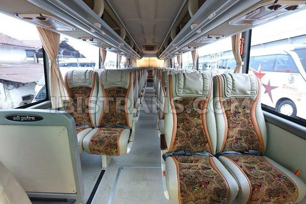 ibistrans.com interior sewa bus pariwisata starbus