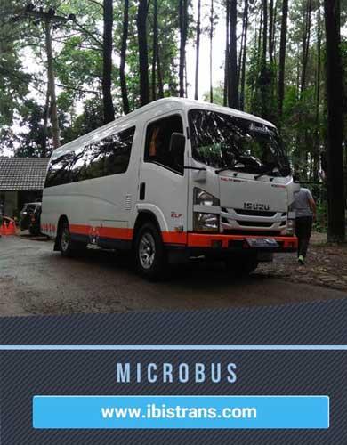 ibistrans.com microbus pariwisata