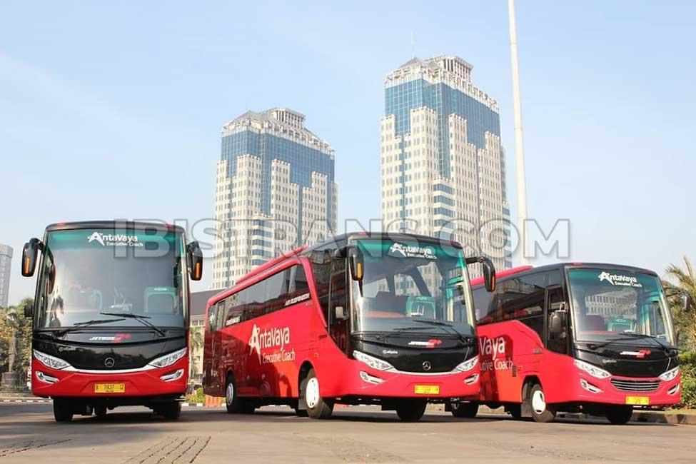 ibistrans.com po bus pariwisata antavaya Jakarta