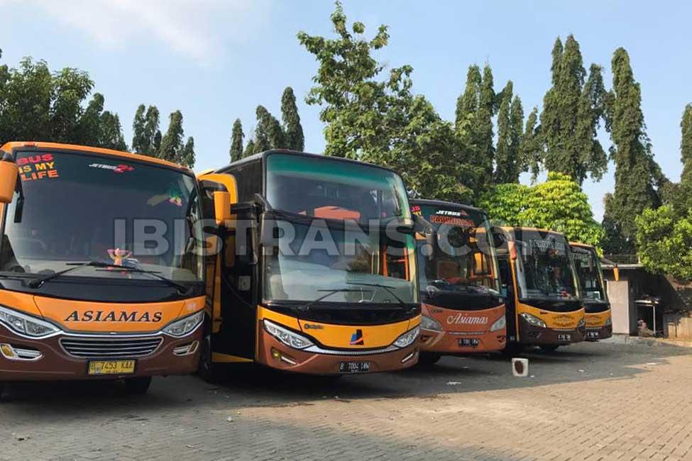 ibistrans.com po bus pariwisata asiamas