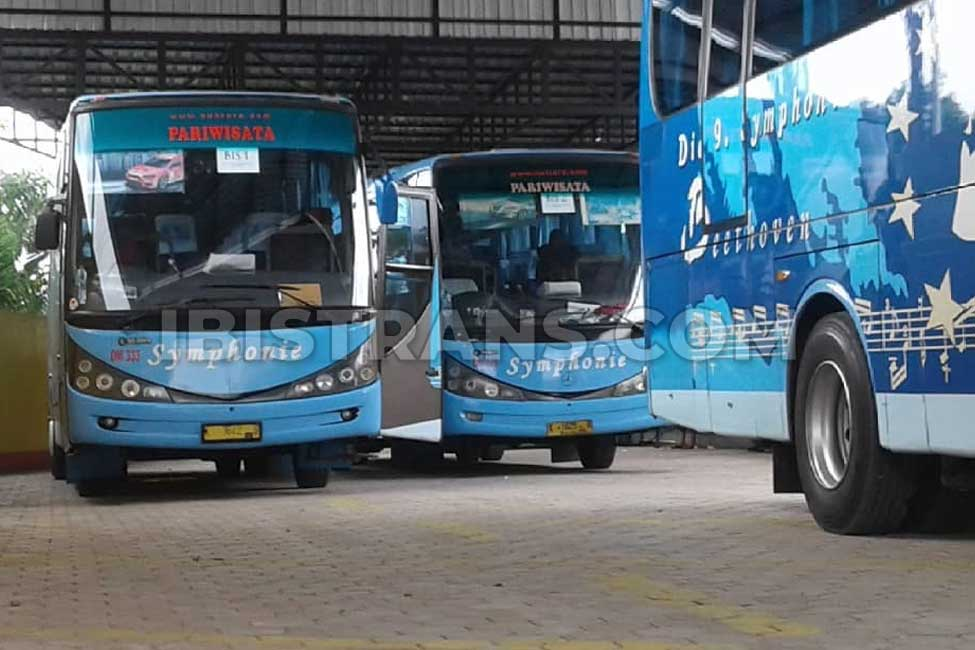 ibistrans.com po bus pariwisata symphonie Jakarta