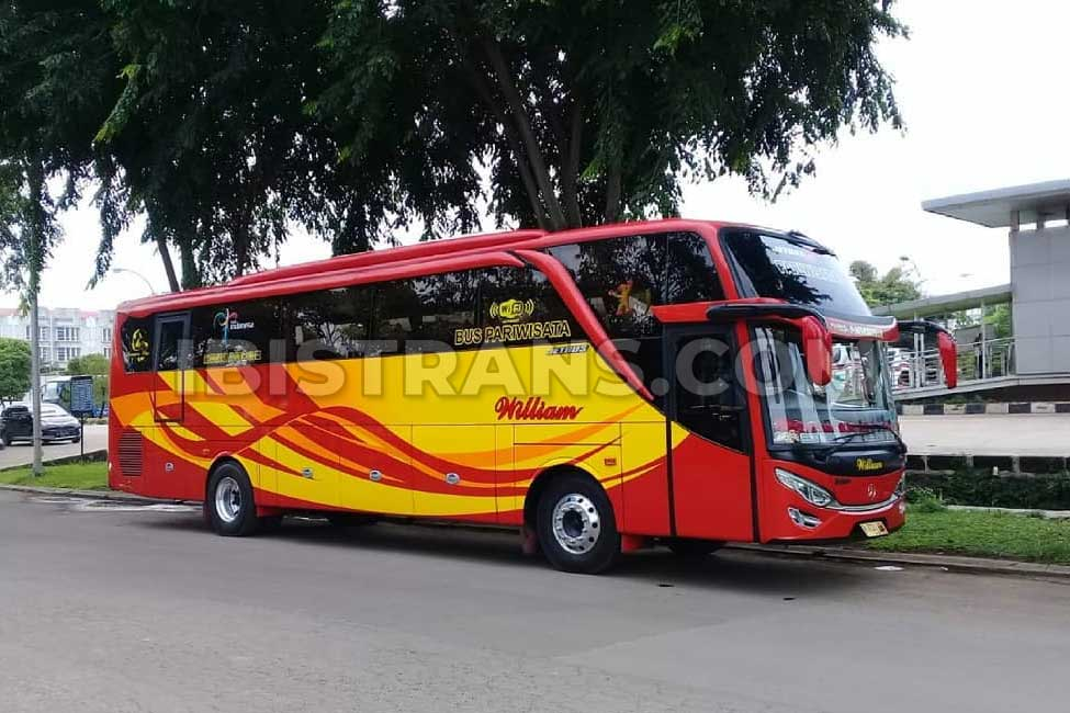 ibistrans.com po bus pariwisata william