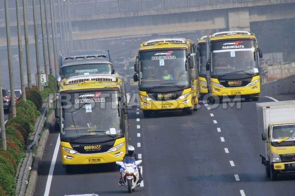 ibistrans.com sewa bus pariwisata BeeBuzz