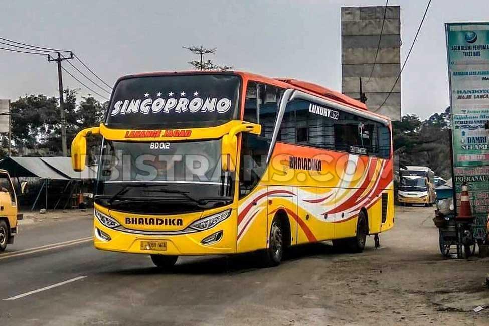 ibistrans.com sewa bus pariwisata Bhaladika