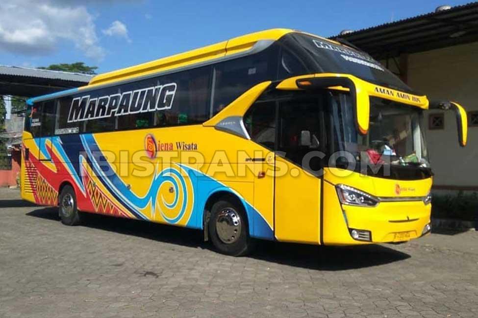 ibistrans.com sewa bus pariwisata HDD siena wisata